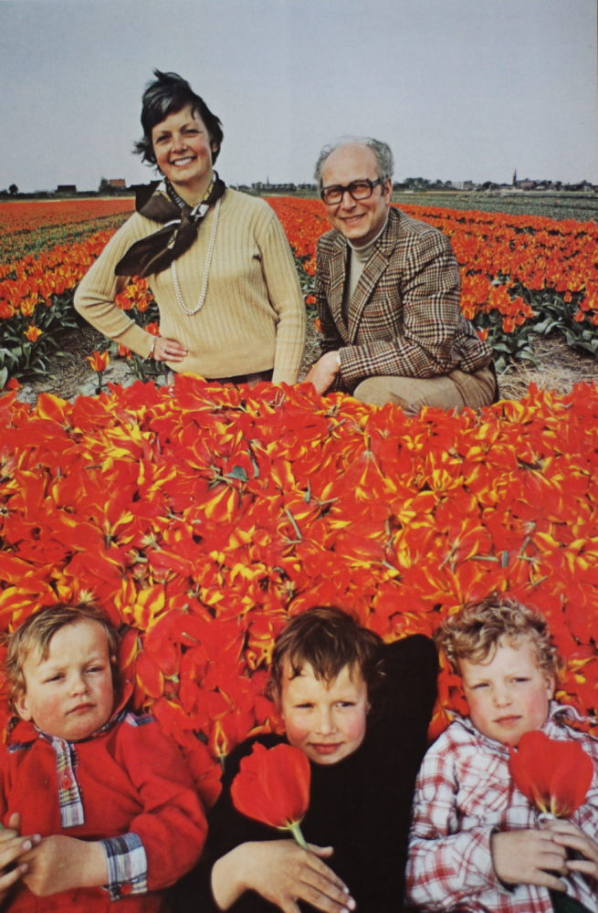 town-and-country-tulip-family
