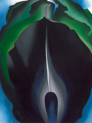 Georgia O'Keeffe, Jack-in-the-Pulpit No. IV, 1930. Oil on canvas, 40 x 30. National Gallery of Art.
